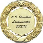 Landesmeister 2014 Medaille