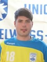 Radu Holom